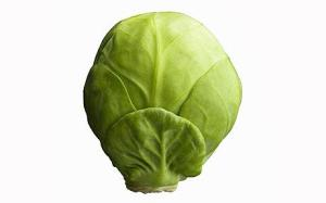 sb10068893l-001.jpg Vegetable Brussel Sprout
