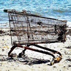trolley on the beach