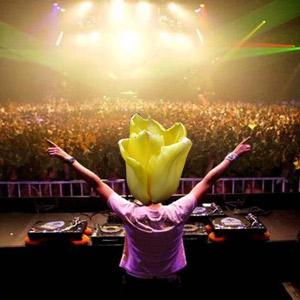 Tulip DJ