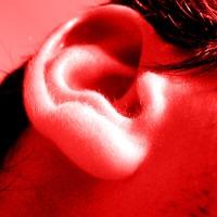 An ear lobe