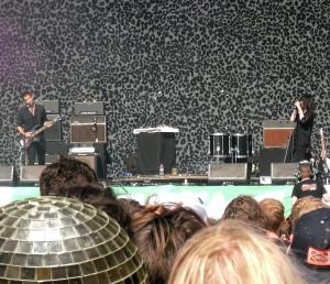 Pig at the gig